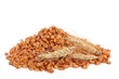 Cereal flakes and wheat
