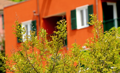 urban countryside green