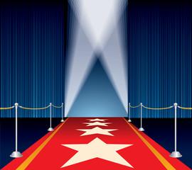 stars red carpet
