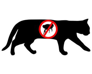 Katze Floh verboten