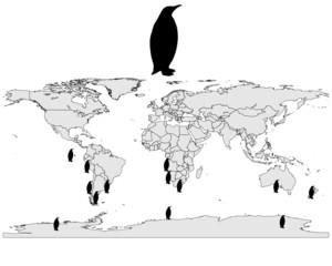 Pinguine Verbreitungskarte