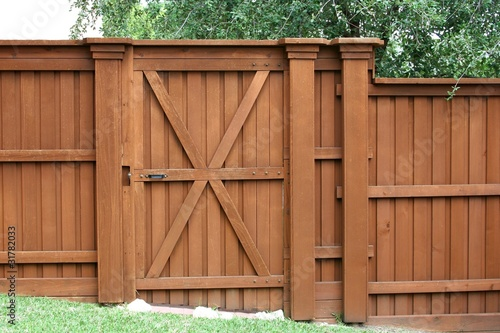 Door in a cedar fence