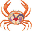 crab anatomy section