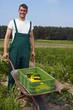 Bauer erntet Zucchini