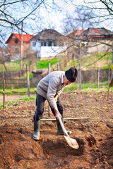 Old farmer digging in the garden