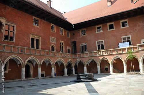 Fototapeta Collegium Maius