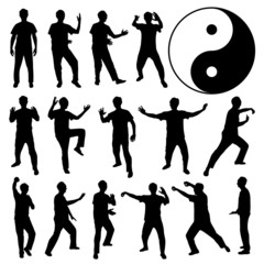 Martial Art Kung Fu Tai Chi Self Defense Man