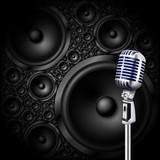 microphone/speaker