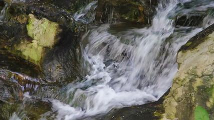 Stream in beautiful Spring