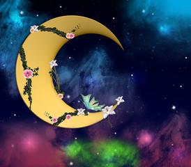 romantica falce di luna