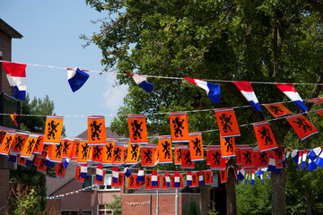 neighborhood arts for Dutch celebration for football or Queens d