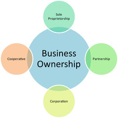 business ownership management diagram
