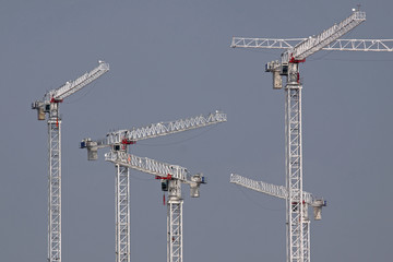 Cranes on a Large Building Site