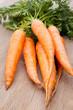 Frische Karotten auf Holzbrett