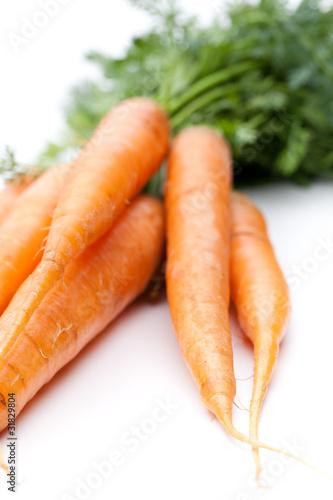Liegende Karotten auf weiß