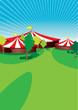 country fair - 31836262