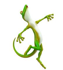gecko free white background
