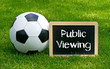Public Viewing - Fußball - Soccer - Concept