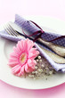 Place Setting in Pink and Purple