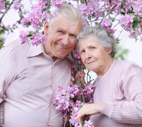 old couple on the flowering  apple-tree  background