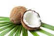 Ganze und halbe Kokosnuss auf Palmblatt isoliert