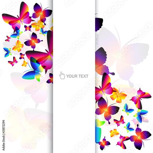 Fototapeta Colorful butterfly background