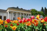 Fototapety Tulpenblüte vor dem Kurhaus Baden-Baden