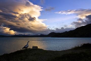 Atardecer en el Lago Pehoe