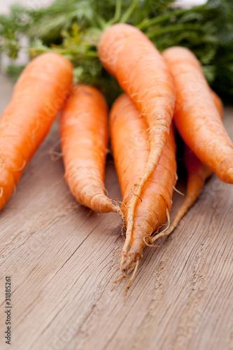 Karotten auf Holz