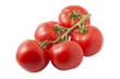 Cluster of fresh isolated  tomatoes