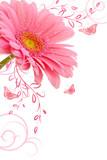 Fototapete Blume - Schweiss - Blume