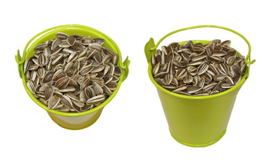 Sunflower seeds and green bucket isolated