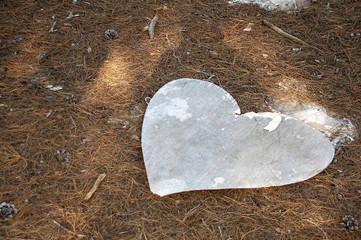 cuore abbandonato