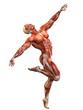 muscle man dance the dance