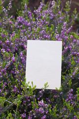 letter[flower]_10