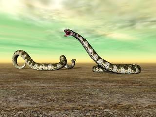 Riesenschlangen