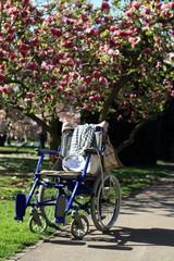 blauer Rollstuhl im Park