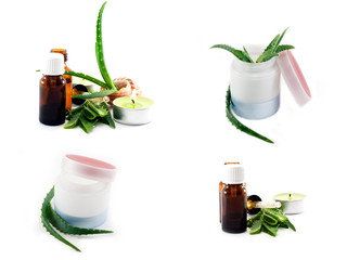 A collection of cream and butter aloe