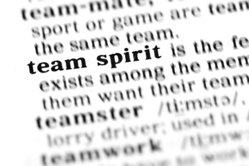team spirit (the dictionary project)