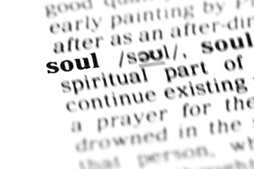 soul (the dictionary project)