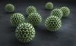 Pollen 3D 2