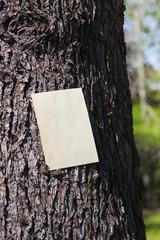 letter[bark]_08