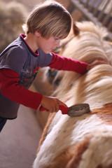 jeune garçon et son poney