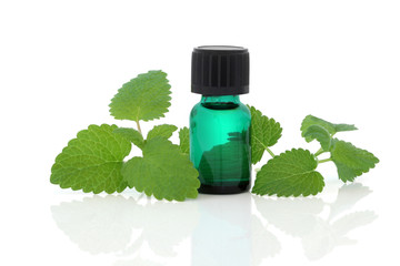 Lemon Balm Herb Essence