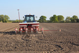 sowing sugar beet