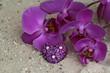 Herz und Orchideenblüte im Sand