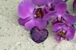 Orchideenblüte und Dekoherz