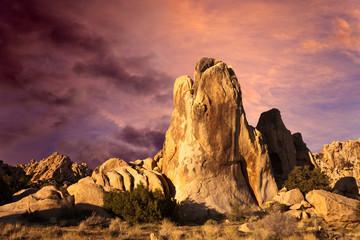 Desert Sunrise in Joshua Tree National Park