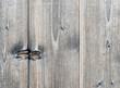 Holzbretter mit Maserung - Wood Texture