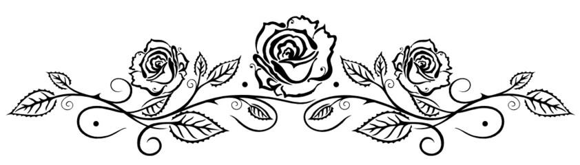 Rose, Rosen, Ranke, Blumen, Blüten, Blätter, schwarz